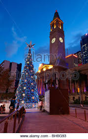 worlds largest solar powered tree at king george square
