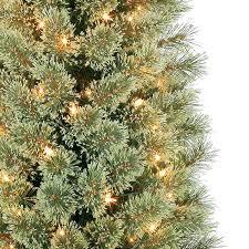 seven foot tree amodiosflowershop