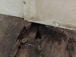 how to cut through subfloor replacing rotted sub floor in your vintage airstream