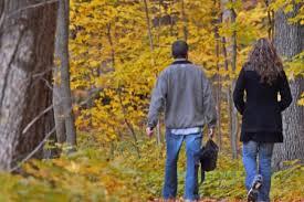 happy thanksgiving free admission the morton arboretum
