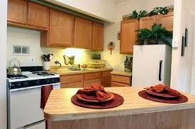 chicago one bedroom apartment chicago one bedroom apartment beautiful on with regard to vibrant