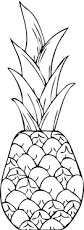 a drawing of exotic smooth cayenne pineapple coloring page