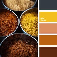 orange spice color colour of spices color palette ideas