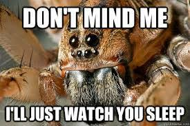 Funny Spiders Memes Of 2017 - spider memes home facebook