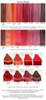 Shaeds Of Red by Reds2 Red Wigs Colour Pallette And Wig