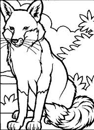 1734 best coloring pages images on pinterest coloring pages