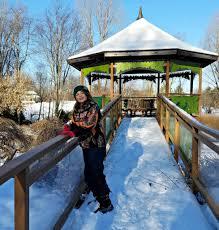 Green Bay Botanical Gardens Winter At The Green Bay Botanical Garden As A Field Trip