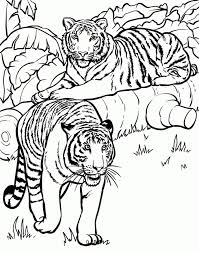 animal coloring pages for children get this free simple animals coloring pages for children cm3xv