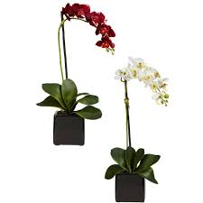 black orchid flower national tree company 22 8 in purple orchid ras gfa5605 1 the