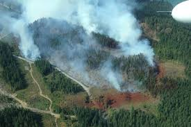 Wildfire Kootenays by Update Lightning May Change Things In Southeast Fire Centre