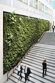 aveda milan the green wall cameras and accessories pinterest