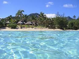 palm grove rarotonga cook islands accommodation