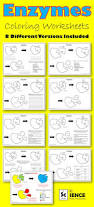 26 best biology macromolecules images on pinterest teaching