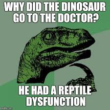 Reptile Memes - why did the dinosaur go to the doctor he had a reptile dysfunction meme