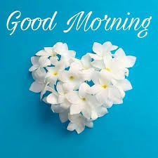 blue morning wallpapers best 25 morning greetings quotes ideas on pinterest good