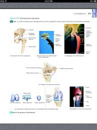 Anatomy And Physiology Online Quizzes Principles Of Anatomy And Physiology Chapter 9 Joints 33 Book