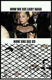 Lady Gaga Memes - lady gaga meme funny pictures quotes memes funny images
