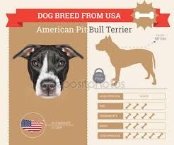 american pitbull terrier jugando pit bull stock vectors royalty free pit bull illustrations