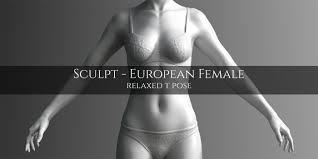 Images Female Anatomy Blender Market European Female Anatomy Sculpt Model Blendernation