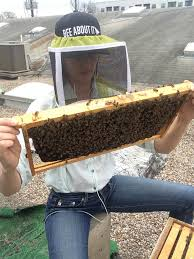 the blog u2014 two hives honey