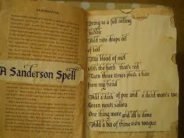 luella lottsworth winnie u0027s spell book