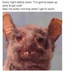 Bat Meme - 10 work memes that will get you through until christmas career