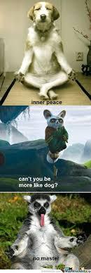 Inner Peace Meme - inner peace by w meme center