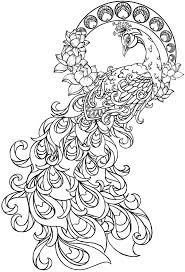 beautiful peacock coloring pages for girls print color craft