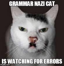 Funny Grammar Memes - grammar nazi cat imgflip