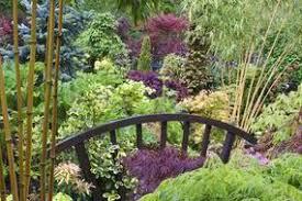 alan titchmarsh tips on preparing your garden for winter garden