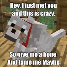 Funny Minecraft Memes - hey i just met you and this is crazy so give me a bone and tame