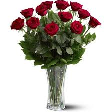 flower deliver a dozen premium roses in minot nd flower central