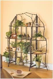 Kitchen Shelves Decorating Ideas kitchen plant shelf decorating ideas urban jungle bloggers kitchen
