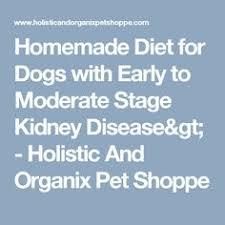 boxer dog kidney problems homemade dog food recipes for kidney failure dog food recipes