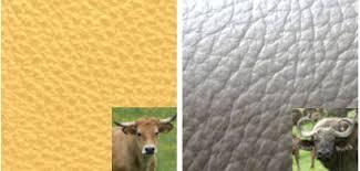 canapé cuir vachette ou buffle conseils canapé choix cuir tissu mousse suspension entretien