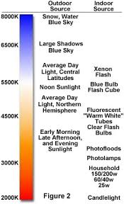 light bulb color spectrum the physics of light and color color temperature