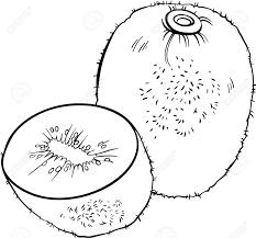black and white cartoon illustration of kiwi fruit food object