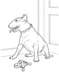 horse coloring pages kids siberian husky colouring puppy siberian
