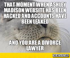 Divorce Meme - every divorce lawyer now the meta picture