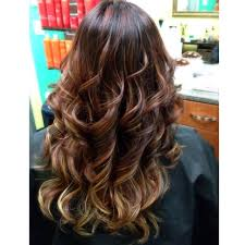 hair highlights bottom highlights bottom of hair hairs picture gallery