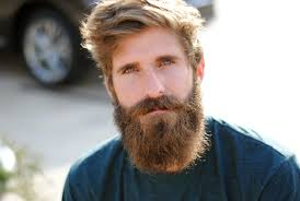 Mens Short Hipster Hairstyles by Short Hairstyle For Men With Beard Ginger Hipster Beard1 Best