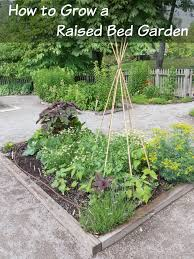 how to start a raised bed garden for your veggies how was your day