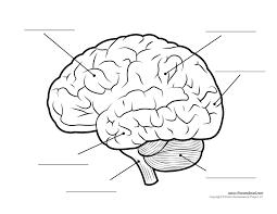 Human Anatomy Diagram Download Head Archives Page 5 Of 31 Human Anatomy Charts