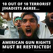 Second Amendment Meme - meme common sense with paul jacob