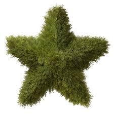 Ny Topiary - national tree company 36 in juniper topiary star lcys4 36 the
