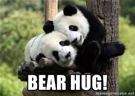 Give Me A Hug Meme - bear hug panda hugs meme generator