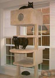Free Diy Cat Tree Plans by 83 Best Cat Tree Condo Images On Pinterest Cats Cat Stuff And