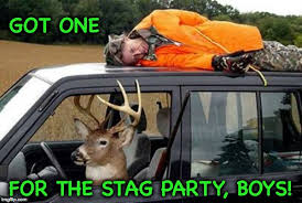 Stag Party Meme - got one for the stag party boys meme