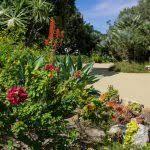 Quail Botanical Gardens Encinitas California Garden Botanical Gardens Encinitas New Quail Botanical Gardens
