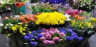 Flowers Direct Grower Bunch Buy S Beneva Flowers Sarasota Florida Florist